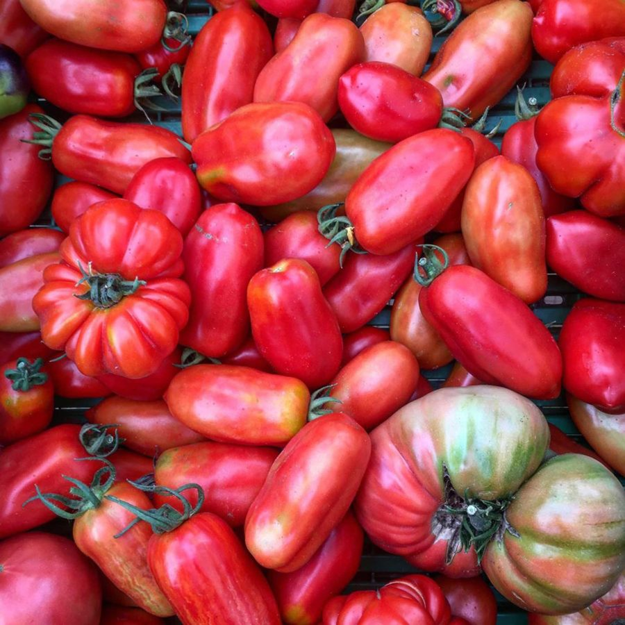 Heritage, Heirloom or Hothouse: Know Your Tomatoes This Tomato Season